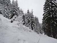 Zima u nás - Pec pod Sněžkou