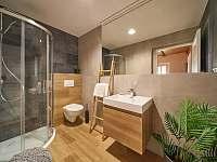 Apartmán 2 - koupelna + WC - Horní Maršov - Temný Důl