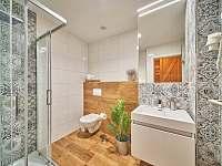 Apartmán 3 - koupelna - chalupa k pronajmutí Horní Maršov - Temný Důl