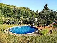 Bazén - chalupa k pronajmutí Hostinné