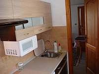 Prostřední Lánov - apartmán k pronajmutí - 22