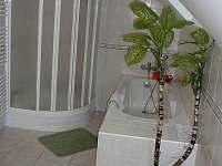 Sprchový kout a vana