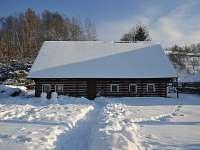 Apalucha v zimě