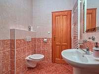 Apartman_c_1_koupelna - pronájem Černý Důl