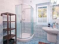 Apartman_c_2_koupelna - k pronajmutí Černý Důl