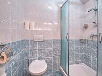 Apartman_c_4_koupelna - k pronájmu Černý Důl