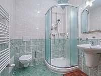 Apartman_c_8_koupelna - k pronájmu Černý Důl