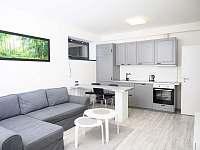 Obývací pokoj - apartmán ubytování Harrachov