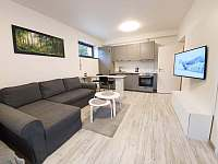 Obývací pokoj - apartmán k pronájmu Harrachov