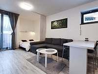 Obývací pokoj - pronájem apartmánu Harrachov