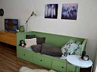 Horní Malá Úpa - apartmán k pronajmutí - 5