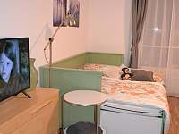 Horní Malá Úpa - apartmán k pronajmutí - 17
