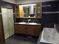 Apartmá 1 koupelna - k pronájmu Poniklá