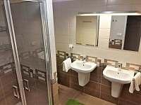 Apartmán Jankův kopec - apartmán ubytování Vrchlabí - 9