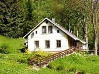 ubytování Skiareál Špindlerův Mlýn na chalupě k pronajmutí - Herlíkovice