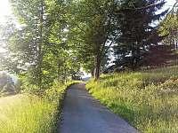 Pohled od chalupy směr Špindlerův mlýn - pronájem Strážné