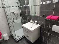 Apartmán č. 1, koupelna - ubytování Horní Maršov