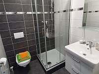 Apartmán č. 2, koupelna - k pronájmu Horní Maršov