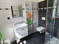 Apartmán č. 3, koupelna - k pronajmutí Horní Maršov