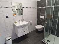Apartmán č. 4, koupelna - k pronájmu Horní Maršov
