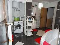 koupelna apartmán - pronájem chaty Poniklá