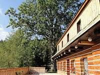 Chata U jasanu - terasa - k pronájmu Špindlerův Mlýn - Labská