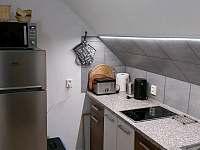 Stylová půdička a prostorný apartmán - apartmán - 21 Horní Maršov