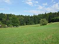 Chalupa pod Lípou - chalupa k pronájmu - 6 Dolní Olešnice - Vestřev
