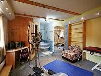 Sauna v objektu - apartmán k pronájmu Rokytnice nad Jizerou