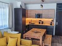 Apartmán Premium #17 - ubytování Rokytnice nad Jizerou - Rokytno