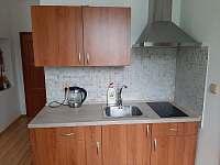 Apartmán 2 - pronájem vily Vítkovice