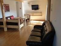 Obývací pokoj s LCD TV - chalupa k pronájmu Černý Důl