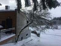 Vstup z lesa v zimě - chata k pronajmutí Vlčice