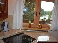 Pohled z kuchyně na rybník