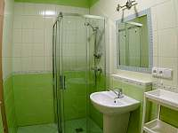 Koupelna - apartmán k pronajmutí Vrchlabí - Herlíkovice
