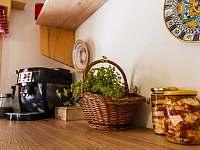 Kuchyně - chalupa ubytování Dolní Dvůr