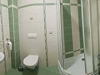 Apartmány Eva - apartmán k pronájmu - 15 Harrachov