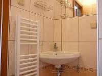 koupelna - rekreační dům k pronajmutí Janské Lázně