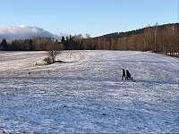 Zimní procházky - Čistá