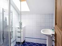 Apartmán delux koupelna se sprchovým koutem