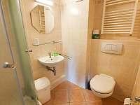 Koupelna v pokoji 3 - Strážné