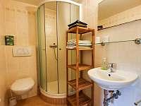 Koupelna v pokoji 4 - chalupa k pronájmu Strážné