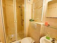 Koupelna v pokoji 5 - Strážné