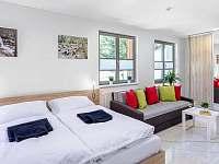 Apartmany - apartmán k pronajmutí - 8 Harrachov