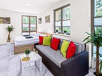Apartmany - apartmán k pronájmu - 3 Harrachov