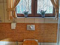 Penzion Pichlberg - apartmán k pronájmu - 6 Rokytnice nad Jizerou