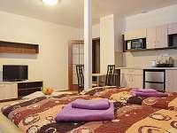 Dolní Rokytnice - apartmán k pronájmu - 7