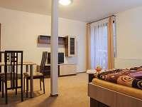 Dolní Rokytnice - apartmán k pronájmu - 8