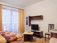 Dolní Rokytnice - apartmán k pronájmu - 6