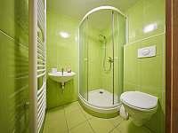 Apartmán - koupelna - Žacléř - Prkenný Důl